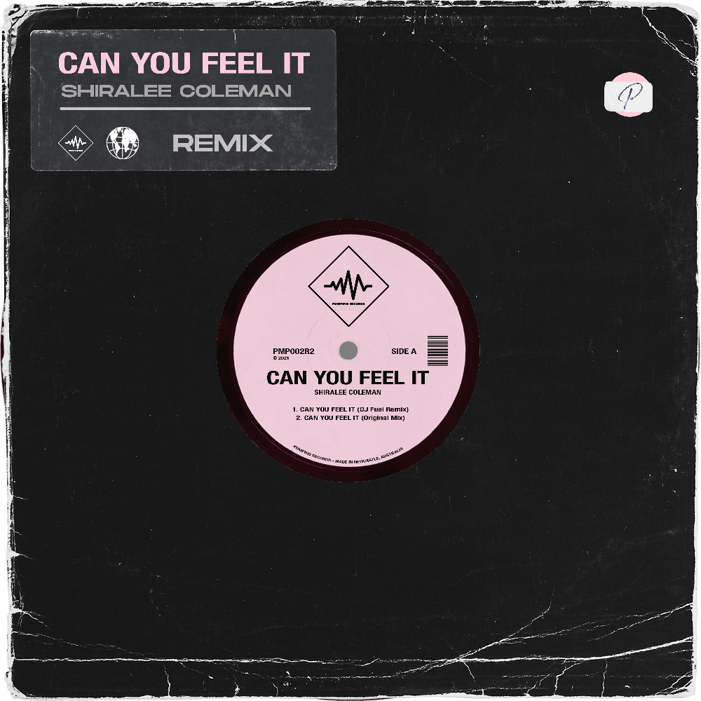 Can You Feel It (DJ Fuel Remix) - Shiralee Coleman - Pumping Records